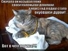https://lolkot.ru/2012/10/23/peremeny/