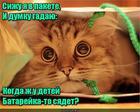 https://lolkot.ru/2018/08/21/perezhidayuscheye-ozhidaniye/