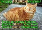 https://lolkot.ru/2014/02/28/persikdskaya-poroda/