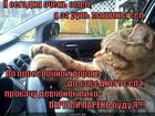 https://lolkot.ru/2015/05/30/pervyy-gonschik-na-derevne/