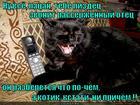 https://lolkot.ru/2012/10/17/pipets/