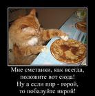 https://lolkot.ru/2016/01/31/pir-goroy/