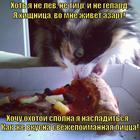 https://lolkot.ru/2014/01/20/pitstsehvatka/