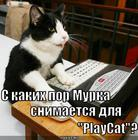 https://lolkot.ru/2010/07/21/playcat/