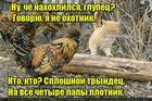 https://lolkot.ru/2016/05/18/plotnik-2/