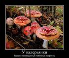https://lolkot.ru/2013/11/27/pobochnyye-effekty/