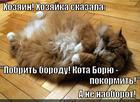 https://lolkot.ru/2014/12/12/pobritaya-anogramma-v-perspektive/