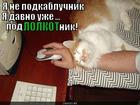 https://lolkot.ru/2013/12/06/podlolkotnik/