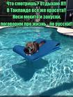 https://lolkot.ru/2015/12/16/pogovorim-za-zhizn/