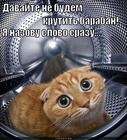 https://lolkot.ru/2012/10/11/pole-chudes/