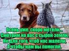https://lolkot.ru/2017/10/22/pomosch-delom/