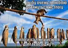 https://lolkot.ru/2013/07/23/pomoschnik/