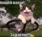 https://lolkot.ru/2011/07/18/poshel-nahuy/