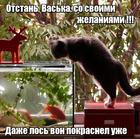 https://lolkot.ru/2015/12/08/poshlyye-zhelaniya/