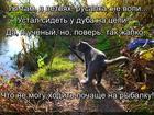 https://lolkot.ru/2017/01/28/poshyol-nalevo/