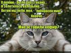 https://lolkot.ru/2019/10/18/postvaleryanovyy-mir/