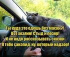 https://lolkot.ru/2020/04/16/postydnyy-hozyain/