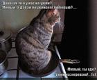 https://lolkot.ru/2011/12/19/pouzhinayem-lyubovyu/