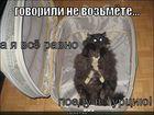 https://lolkot.ru/2011/09/24/poyedu-v-turtsiyu/