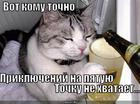 https://lolkot.ru/2013/12/16/priklyucheniya-na-pyatuyu-tochku/