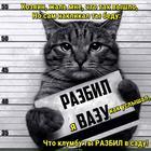 https://lolkot.ru/2017/02/08/primer-dlya-podrazhaniya/