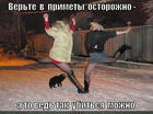 https://lolkot.ru/2015/01/31/primeta-3/