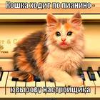 https://lolkot.ru/2012/09/27/primeta-2/