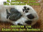 https://lolkot.ru/2014/06/05/prirozhdennyy-moshennik/