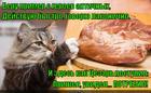 https://lolkot.ru/2015/05/02/prishel-uvidel-zatochil/