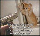 https://lolkot.ru/2011/06/23/priznavaysya-2/