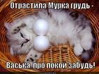 https://lolkot.ru/2012/10/18/pro-pokoy-zabud/