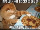 https://lolkot.ru/2012/02/26/proschennoye-voskresene/
