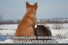 https://lolkot.ru/2012/08/21/prostokvashino/