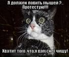 https://lolkot.ru/2012/08/29/protestuyu/