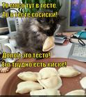 https://lolkot.ru/2014/11/22/pryatki-v-teste/