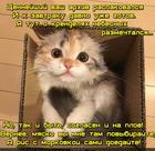 https://lolkot.ru/2016/05/27/pustoy-arhiv/