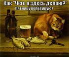 https://lolkot.ru/2011/06/26/pyatnitsu-repetiruyu/