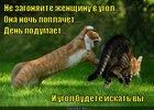 https://lolkot.ru/2012/07/18/pyatyy-ugol/