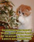 https://lolkot.ru/2013/09/26/radost-gadost/