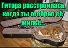 https://lolkot.ru/2015/12/23/rasstroyennaya-gitara/