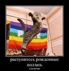https://lolkot.ru/2012/07/04/rastupites/