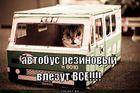 https://lolkot.ru/2011/07/15/rezinovyy-avtobus/