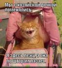 https://lolkot.ru/2014/07/14/rolevyye-igry/