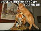 https://lolkot.ru/2011/04/17/russkoye-kote/