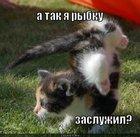 https://lolkot.ru/2011/12/09/rybku-zasluzhil/