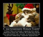 https://lolkot.ru/2013/12/27/s-nastupayuschim-novym-godom/