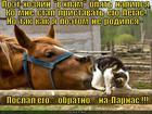https://lolkot.ru/2013/04/11/s-pravilnym-posylom/