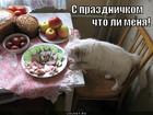 https://lolkot.ru/2011/12/08/s-prazdnichkom/