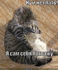 https://lolkot.ru/2010/07/13/sam-sebya-poglazhu/