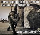 https://lolkot.ru/2012/04/30/samoye-horosheye-utro/